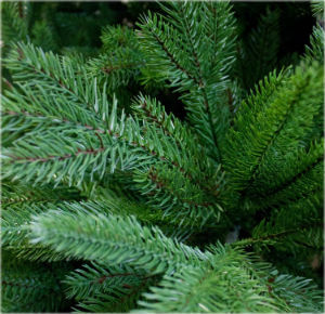 Künstlicher Weihnachtsbaum Zweige aus 100 % Spritzguss
